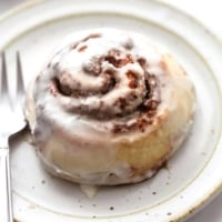 up close single cinnamon roll