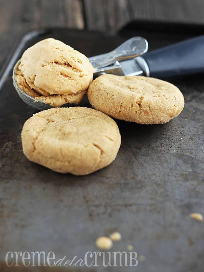 pumpkin-snickerdoodle-ice-cream-sandwiches-6w