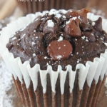 Triple Chocolate Chip Muffins
