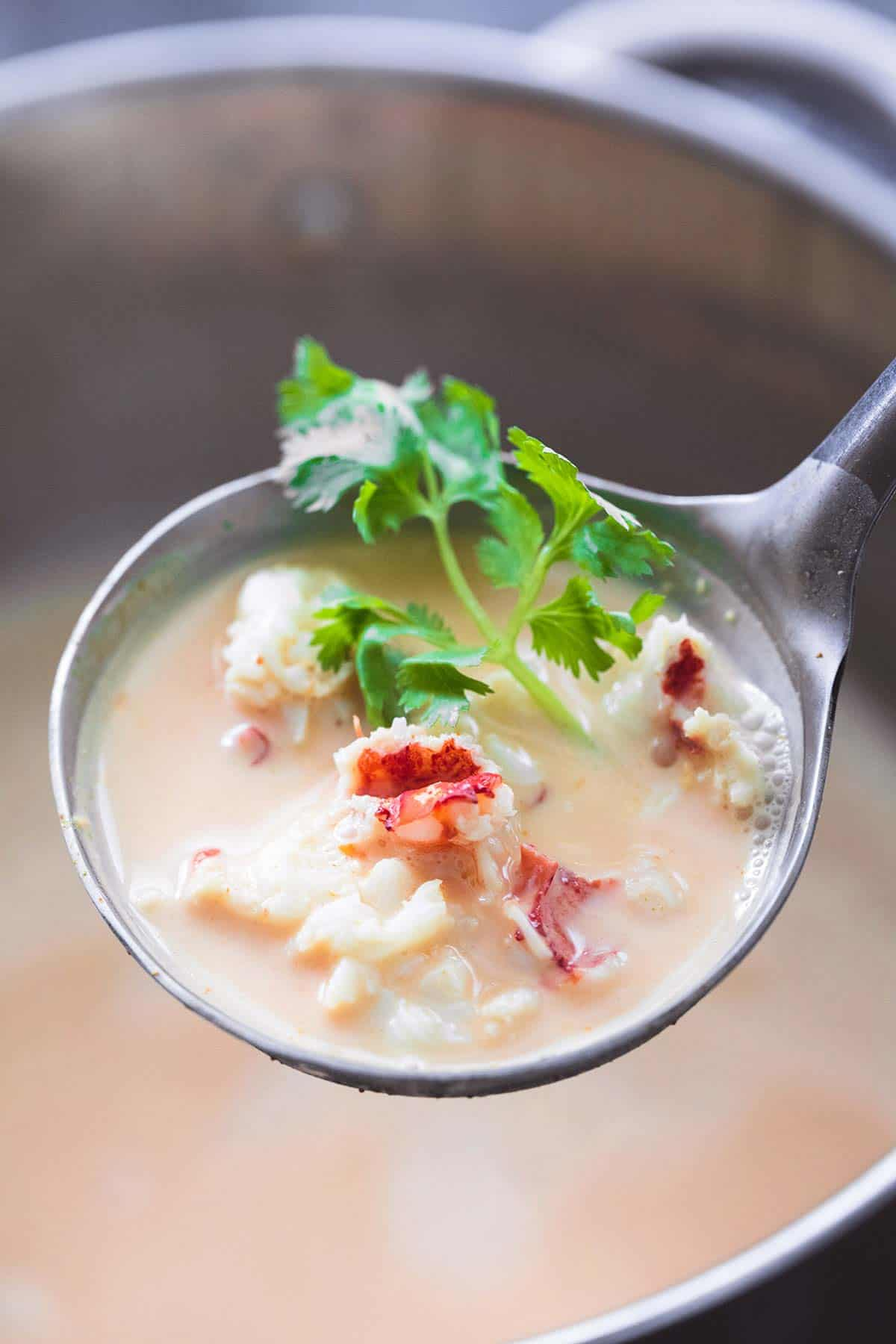 Thai Lobster Bisque | lecremedelacrumb.com