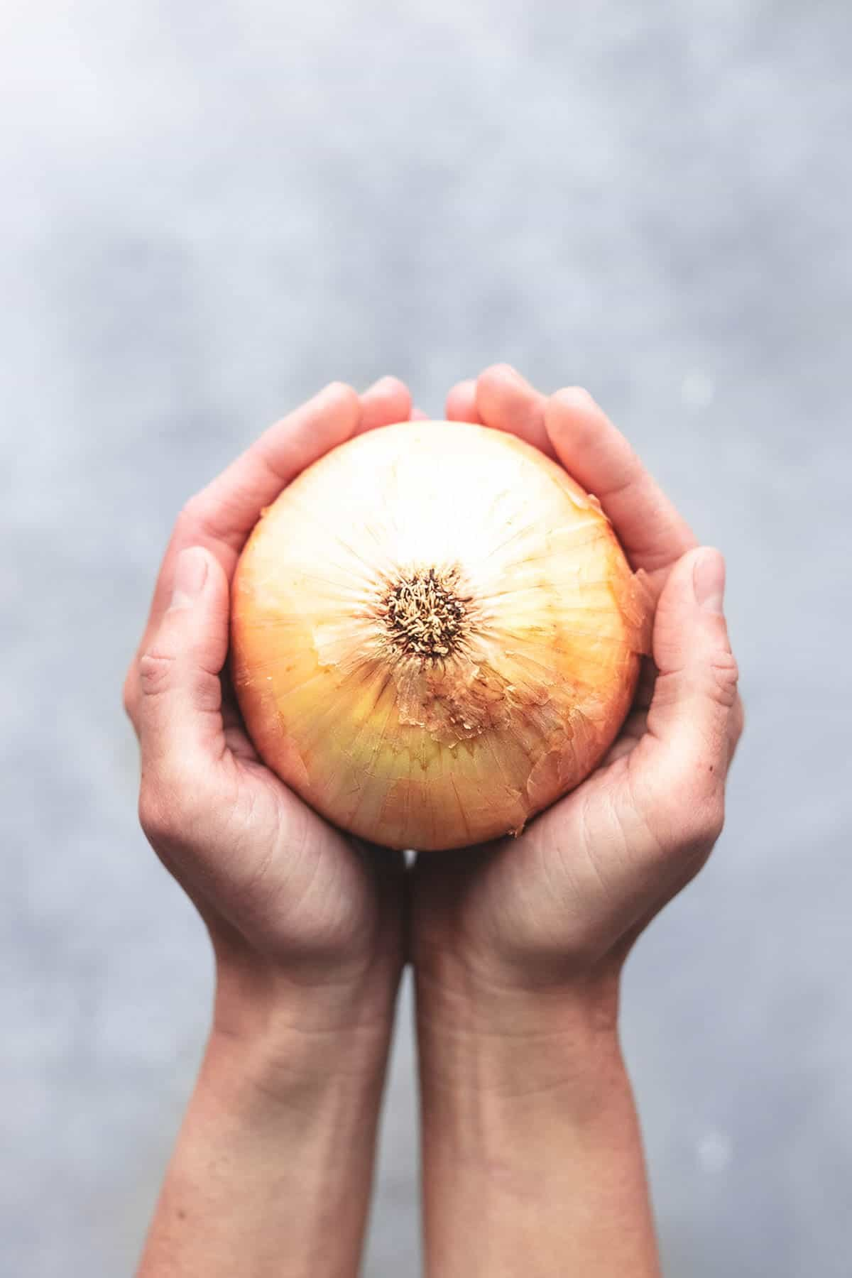 overhead hands holding onion