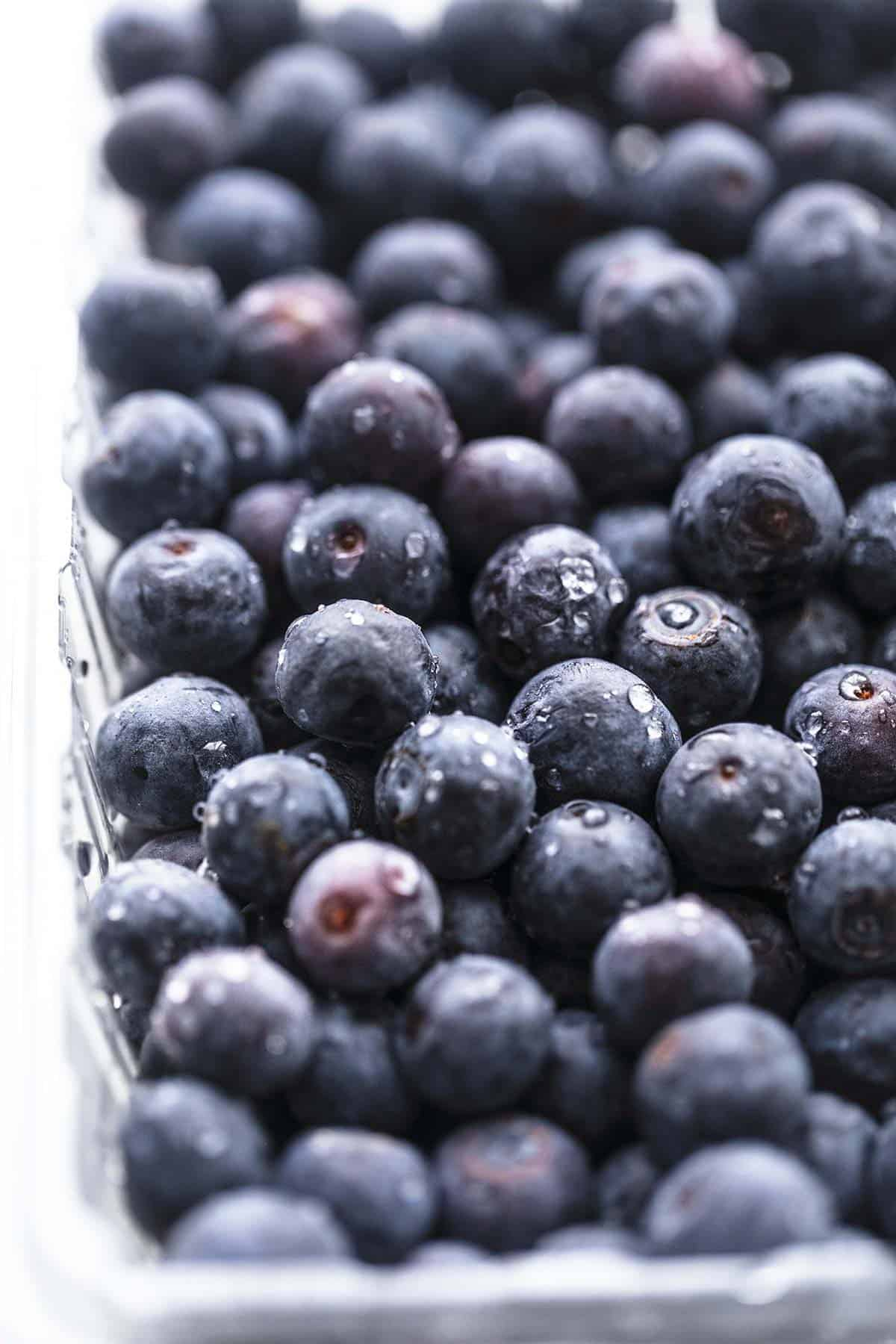 fresh blueberries up close