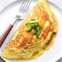 up close japanese rice omelet