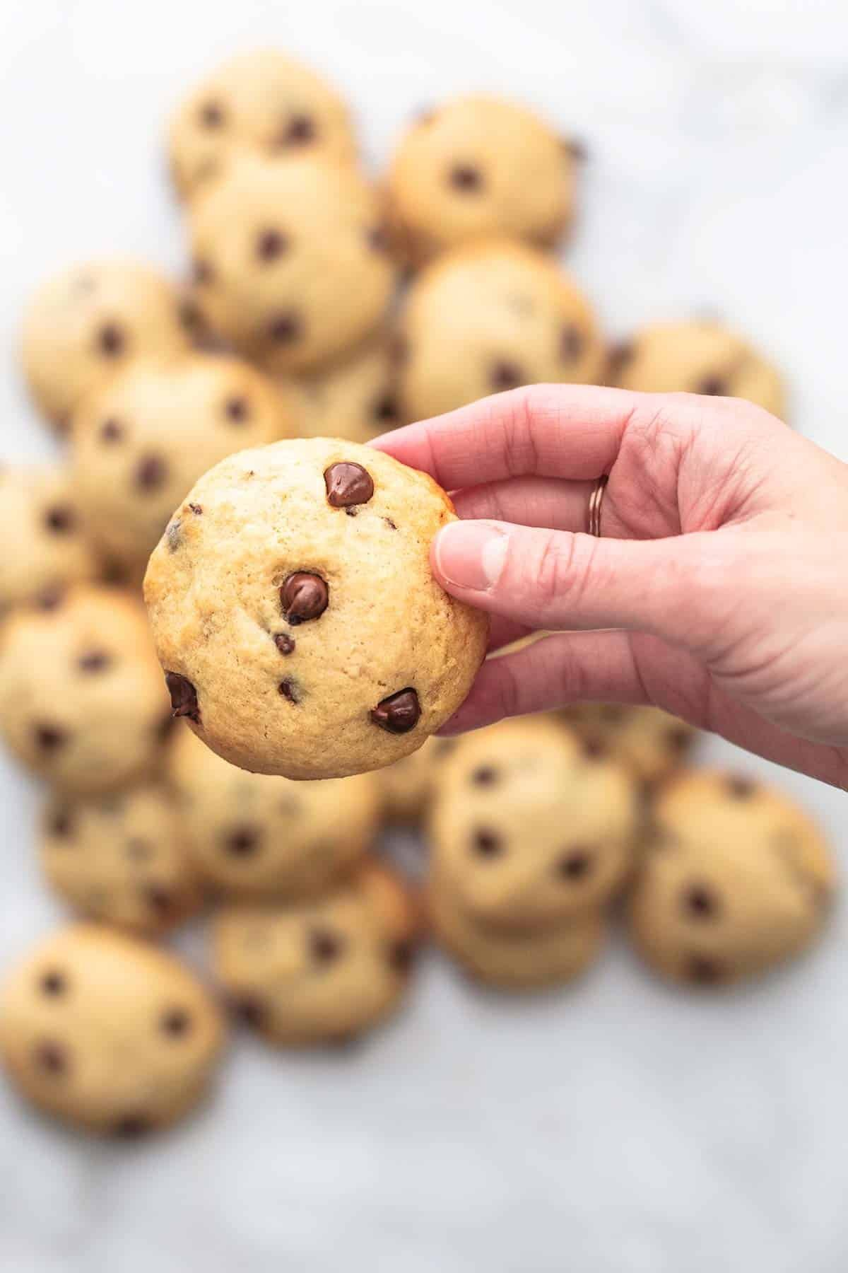 overhead hand holding a single cookie above more cookies